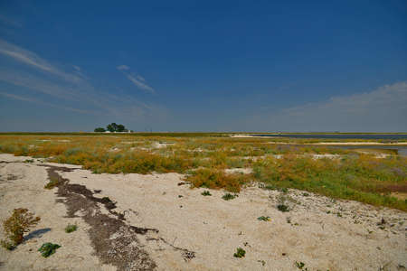 Biryuchiy Ostrov is a spit in the southern, extended part of the Fedotova Spit, located in the western part of the Azov Sea. Together with the narrow northern part of the Fedotova Spit, Biryuchiy Ostr Reklamní fotografie