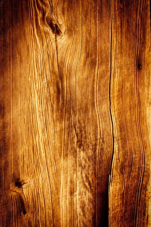 textured: Old Wood close up textured Background