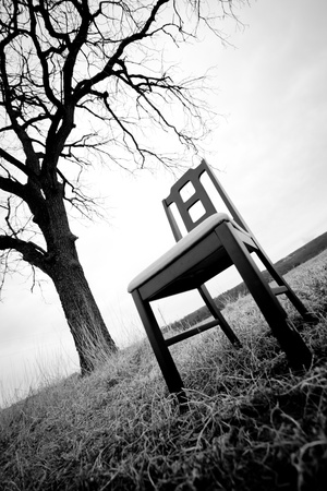 Modern chair under a tree in the field