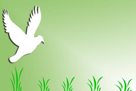A white bird with green grass and green and white background Stok Fotoğraf