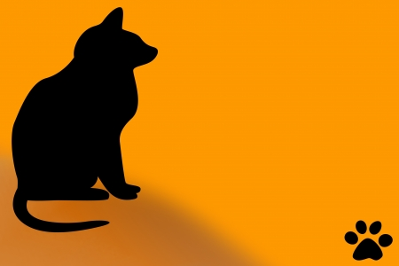 A black Halloween cat with a paw print. Orange background. Stock Photo
