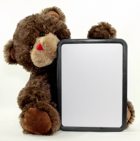 dry erase board: A brown bear holding a blank dry erase board Stock Photo