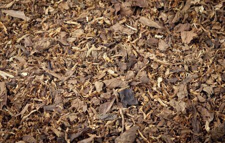 Tobacco pile Banco de Imagens