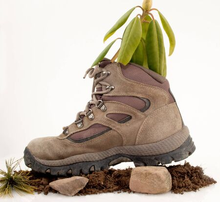 Hiking boot on dirt ,stones on white background. Green leaves inside the boot Stock Photo - 17089761