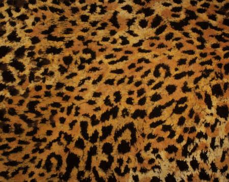 Leopard fur texture photo