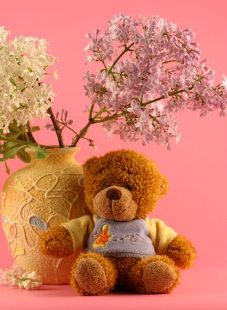 Toy the bear sits near to a vase with a bouquet of a lilac on a pink background photo