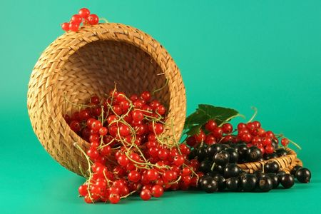 Berries of a red and black currant in a basket. Stock Photo - 2310167