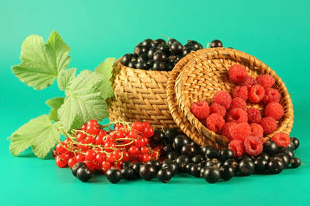 Berries of a red currant, a black currant and raspberry  in a basket. photo