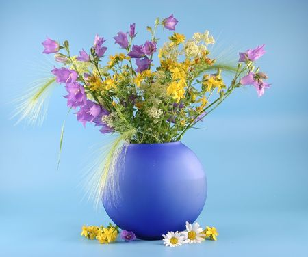 Vase with bouquets of field flowers are photographed on a blue background. photo