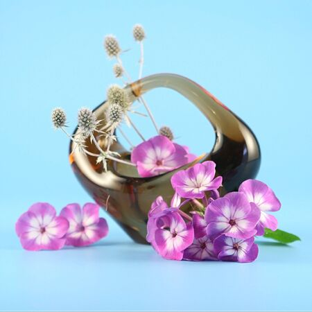 Basket with clematis on a blue  background
