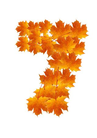 Autumn leaves number isolated on white background - number seven photo