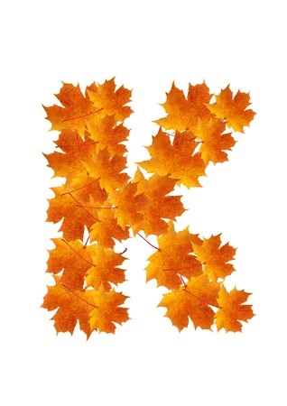 Letter K from orange autumn maple leaves  Stock Photo - 7653162