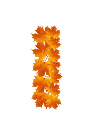 Letter I from orange autumn maple leaves  Stock Photo - 7653127