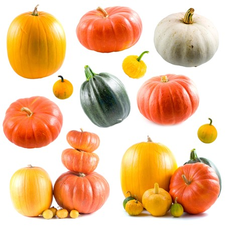 Collection of colorful pumpkins isolated on white background