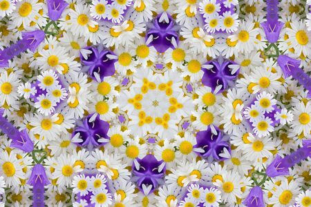 chamomel: Kaleidoscope with chamomiles and campanulas, abstract background