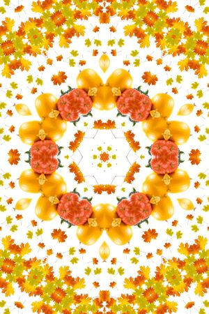 kaleidoscope of maple leaves and pumpkins , autumn composition  photo