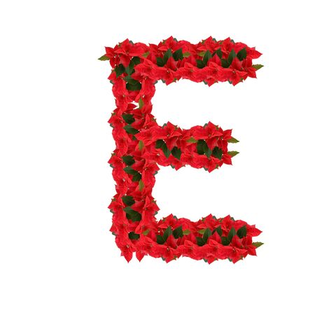 Letter E from the red flowers isolated on white background photo