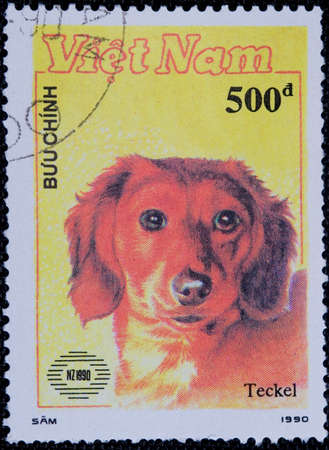 Vietnam- CIRCA 1990: A stamp printed by Vietnam shows the Dog Fee, stamp is from the series, circa 1990 Stok Fotoğraf - 8099284
