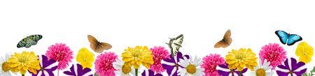 cenefas flores: Borde de flores y mariposas aisladas en un fondo blanco