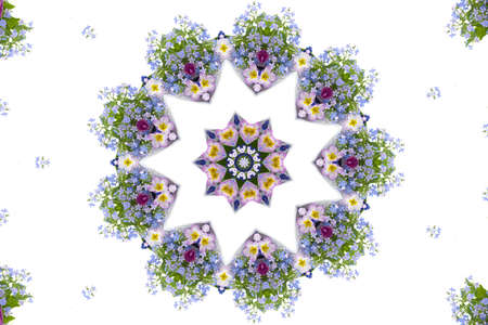 lilas: Kaleidoscope. Bouquet of spring flowers on a white background