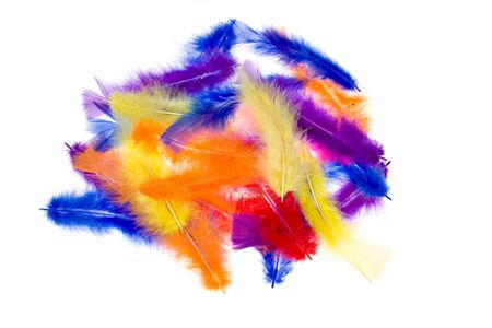 Feathers isolated on a white background Stock Photo - 9242633