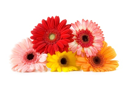 Bouquet gerberas  isolated  on white background photo