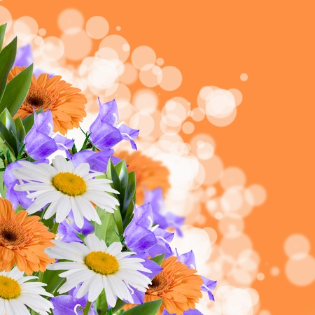 Beautiful flowes on a orange abstract background  photo