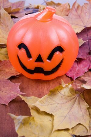 Halloween pumpkin on autumn leaves isolated on whit  Stock Photo - 11009286