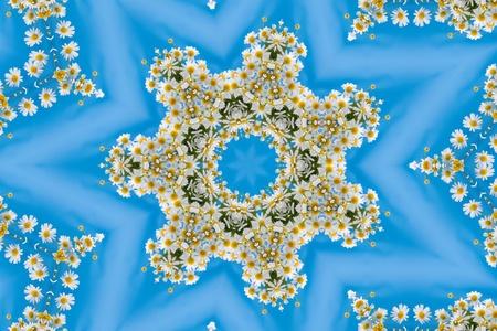 camomiles macro: Kaleidoscope of beautiful wild flowers, summer flower