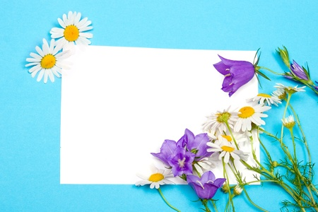 Greeting card for congratulations with bluebells and daisies on a blue background photo