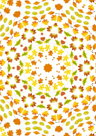 Beautiful kaleidoscope of yellow autumn leaves photo
