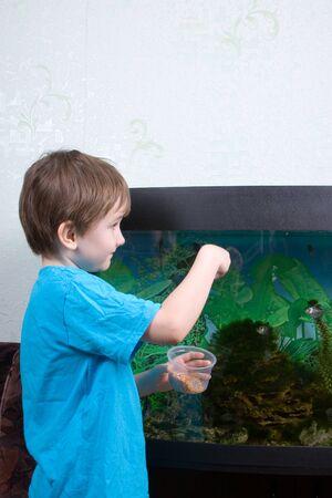 Jongen voedt vissen in een aquarium thuis