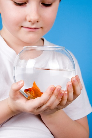 Boy holds a fishbowl with a goldfish on a blue background