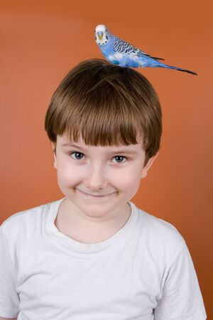 Portrait smiling boy with a parrot on his head on a brown background Stock Photo