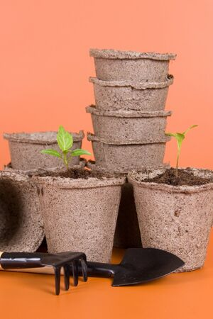 Peat pots, seedlings and garden tools on a brown background photo