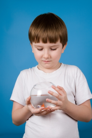 Boy holds a fishbowl with a goldfish on a blue background photo