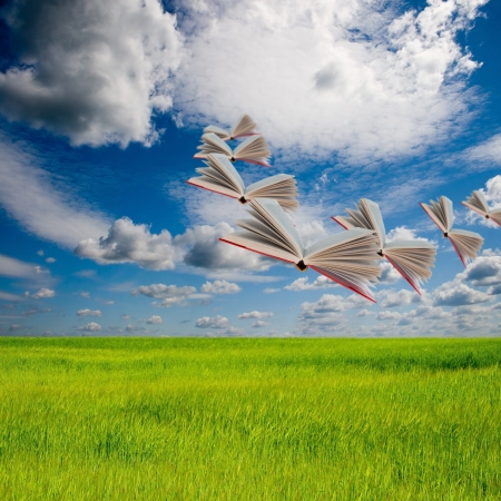 Books are flying in the sky over the summer meadow