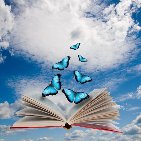Open book with butterflies flying from it  Imagens
