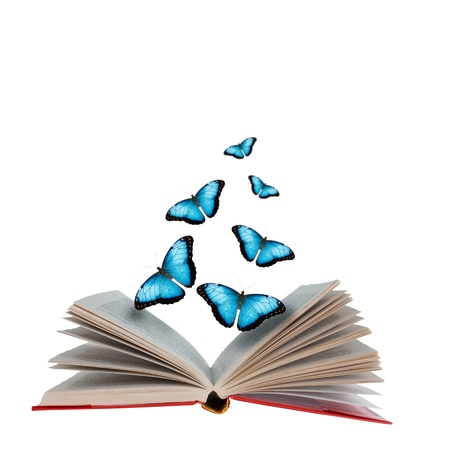 Open book with butterflies flying from it  Stockfoto
