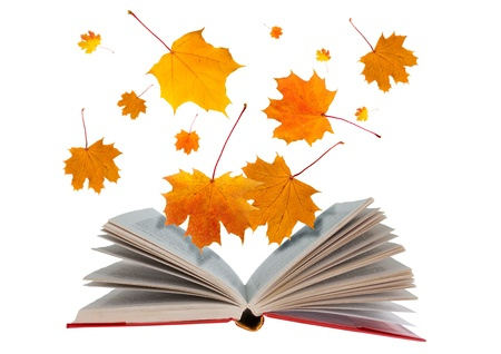 Open book with maple leaves flying from it