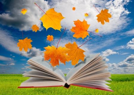 libros volando: Libro abierto con hojas de arce de vuelo de la misma