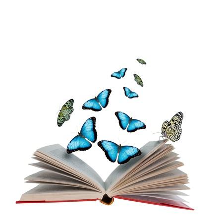 mariposas volando: Libro abierto con las mariposas volando de ella Foto de archivo