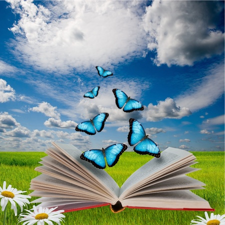 Open book with butterflies flying from it  Фото со стока