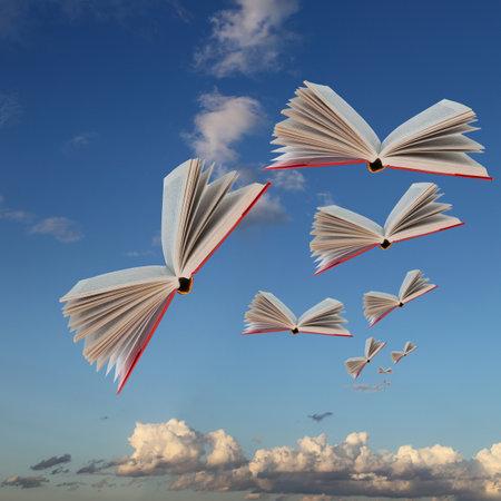 Los libros están volando contra el fondo del cielo nublado y de la tierra