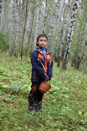 Boy with a basket is in the birch forest photo
