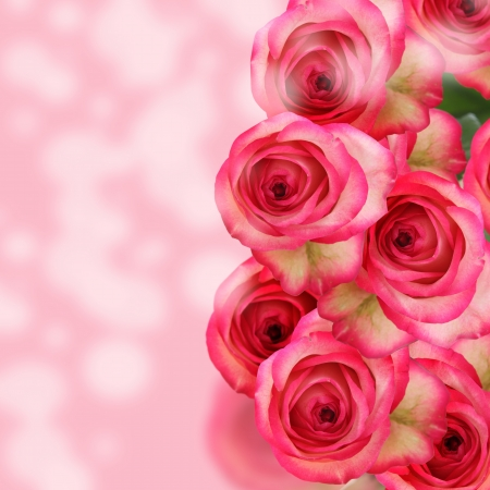 Beautiful bouquet of pink roses on abstract background photo