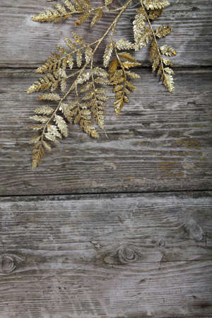 Golden twig on a wooden background photo