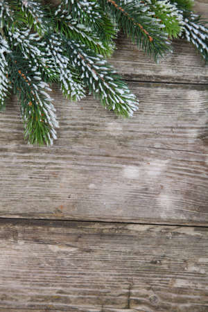 Christmas fir tree on the wooden board  Stock Photo - 16920620