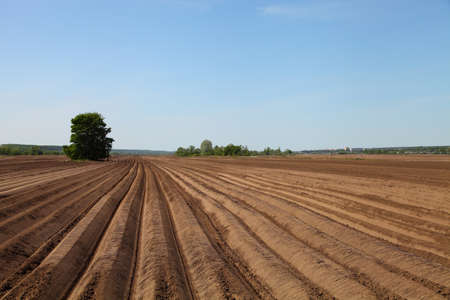 arable land: Beautiful spring landscape with arable land Stock Photo