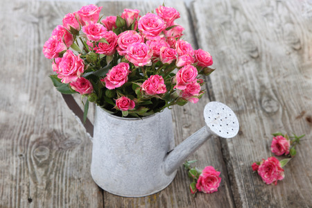 hearts and roses: Bouquet of roses in a watering can on a wooden background